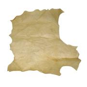 پوست طبیعی تار