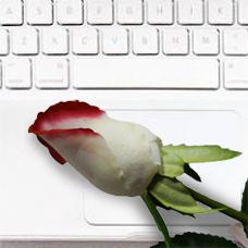 گل مصنوعی32007