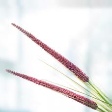 گل مصنوعی 038A