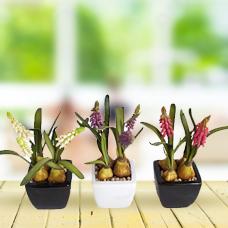 سه عدد گل مصنوعی با گلدان مدل 004