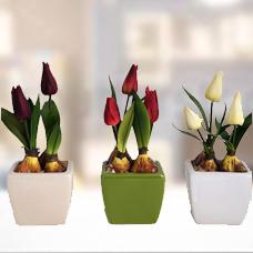 سه عدد گل مصنوعی لاله با گلدان مدل 005