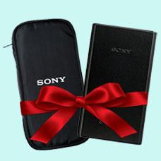 پاوربانک SONY CP-V20 همراه با کیف